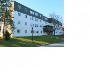 Spacious, Centrally Located, High End 1 Bedroom Apartments