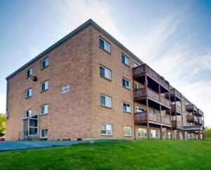 1, 3 Farthington Place  - 1 Bedroom Apartment for Rent