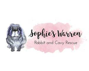 **WANTED** RABBIT OR GUINEA PIG EQUIPMENT FOR RESCUE GROUP Maddington Gosnells Area Preview
