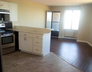 Kenwick Place - 1 Bedroom Apartment for Rent Sarnia Sarnia Area image 3
