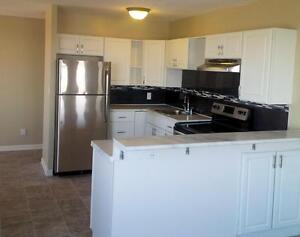 Kenwick Place - 1 Bedroom Deluxe Apartment for Rent Sarnia Sarnia Area image 2