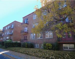 1 bedroom  (3 1/2)  - Monkland Village area location, very clean