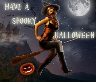 Halloween Decoration Spooky Scary Cat Pumpkin Ghosts Skeleton Fridge Magnet #9 - Scary Cat Halloween Pumpkin