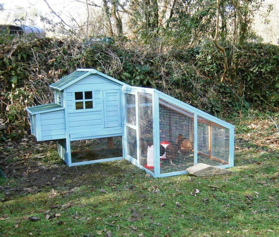 Hen House Suitable For Up To Five Chickens In Launceston Cornwall