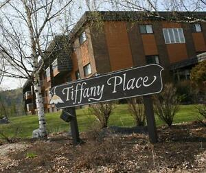 Tiffany Place Apartments - 2 Bedroom (corner suite) Apartment...