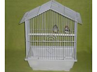 Pair of zebra finch's with cage