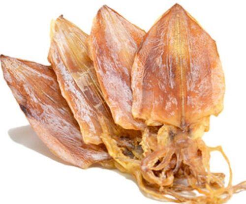 Large Dried Squid 5oz (3pcs-5pcs) / 10oz (6pcs-10pcs) US Seller Free Shipping