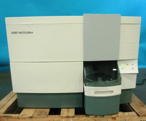 BD (Becton Dickinson) FACSCalibur Flow Cytometer