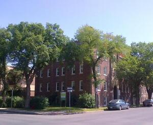 1 Bedroom Apartment in Downtown Regina January Rent Only $500