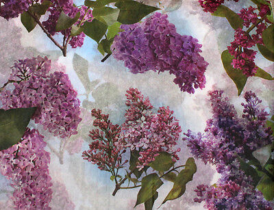 LILACS Floral Tissue Paper ~ Flowers #337 ~ 10 Large Sheets