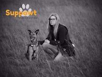 Suppawt Dog Training