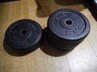30kg weight discs (6 x 5kg) + Abs Bench