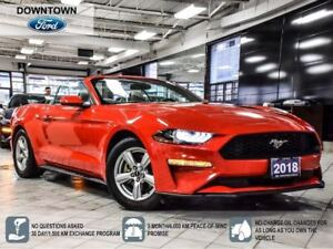 2018 Ford Mustang EcoBoost, Manual, Back up Cam, Bluetooth