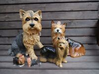 Collection of various size Yorkshire terrier models