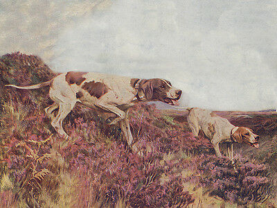 POINTER CHARMING DOG GREETINGS NOTE CARD TWO DOGS ON MOOR