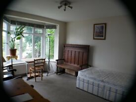 Flat share: Large Bedroom in garden flat in Kingston/Surbiton - Furnished £120 week / £520 month
