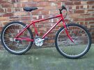 MANS/BOYS FIREFLY MOUNTAIN BIKE
