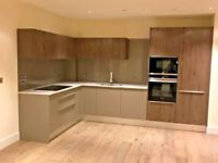 New ALNO kitchen units plus sink and extractor fan, grey and wood laminate