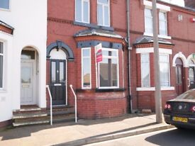 Large double room to rent, in a quiet and friendly shared house.