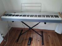 Casio PS-20 Digital Piano: 88 Keys Grand Digital Piano + Stand + 1 Pedal