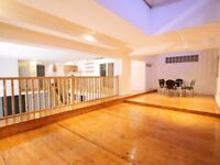 N16 Stoke Newington Large 4 Bedroom 2 Reception Unit In Converted Warehouse close to Dlaston Station