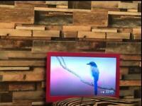 "LOGIK TV 22"""