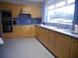 Birch kitchen for sale.