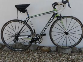 Cannodale Synapse Carbon Hi Mod , sell as complete bike or frame only