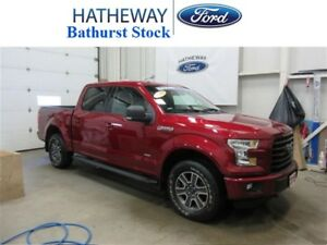 2015 Ford F-150 XLT, 302A PACKAGE, BEAUTY TRUCK