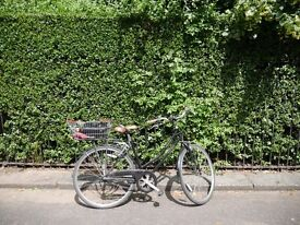 Vintage Dutch style bicycle with basket