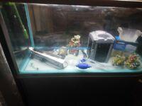Jebo r style apuarium 4foot fish tank