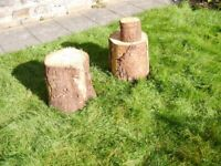 Tree Stumps - Plant Stands / Chopping Blocks / Stools / Tables