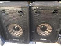 PROSOUND PS120 Pair Speakers