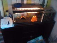 2ftx1x1 fish tank + small tank.