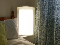 Light Therapy Lamp - Innolux Mesa Mega 160