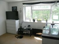 1 Bedroom Flat - Furnished - No agency fees - Near to town centre