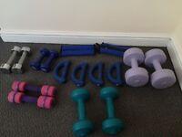 Selection of 0.5kg - 3kg dumbbells & ankle/wrist weights (dumbells, gym, fitness, bootcamp)