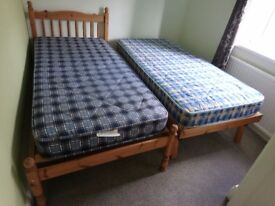 Pine single bed with pull out guest bed