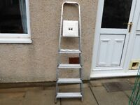 5 Step Stepladder