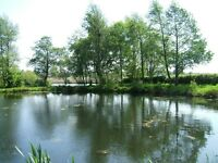 Coarse Fishing Pool, Pond or Lake Wanted in Cheshire