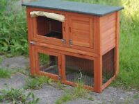 Wooden rabbit or guinea pig hutch