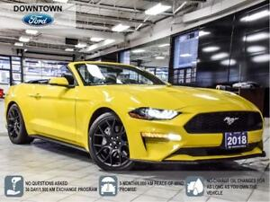2018 Ford Mustang Premium, Perf Pack, Magnetic Ride, adaptive Cr