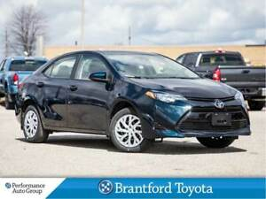 2019 Toyota Corolla LE, Camera, Heated Seats, Demo Unit