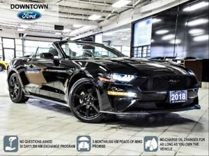 2018 Ford Mustang EcoBoost Premium   NAV   BLACK ACCENT PACK