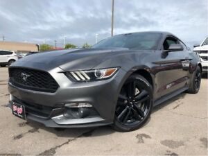 2015 Ford Mustang EcoBoost 4 NEW TIRES RECARO SEATING