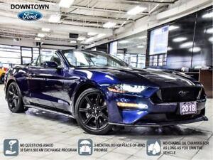 2018 Ford Mustang GT Premium, Shaker Audio, Navi, BLK Appear Pac