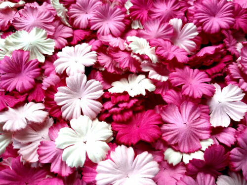 50+Mixed+Tone+Pink+White+Petals+Carnation+Flowers+Mulberry+Paper+Craft+%26+D.I.Y