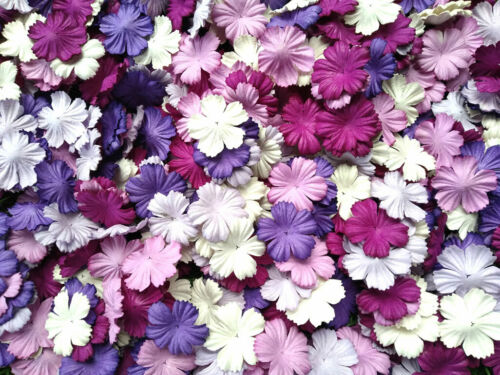 50+Mixed+Tone+Purple+White+Petals+Carnation+Flowers+Mulberry+Paper+Craft+%26+D.I.Y