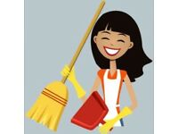 Cleaning and Domestic Services