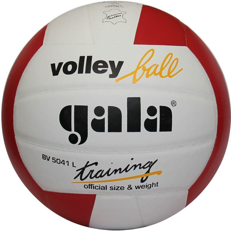 Gala TRAINING BV5041L volleyball
